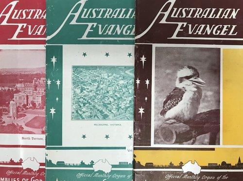 Australian Evangel Kookaburra