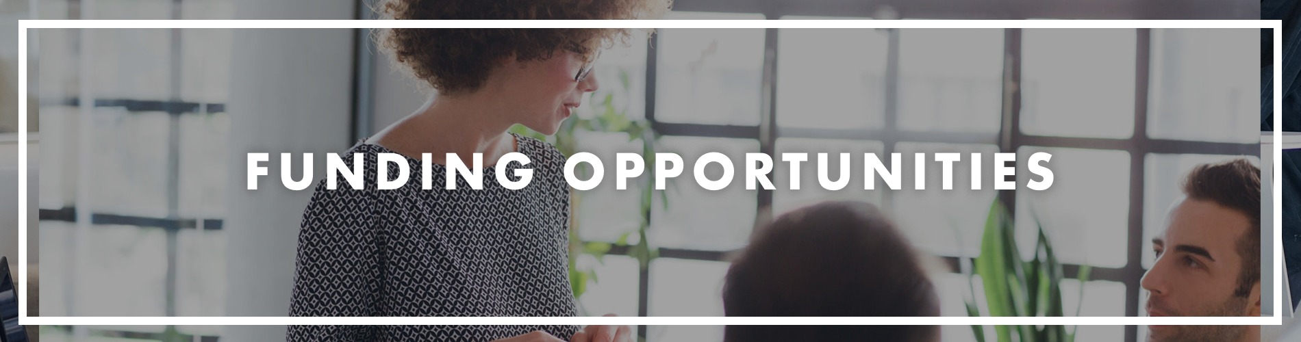 Funding Opportunities banner