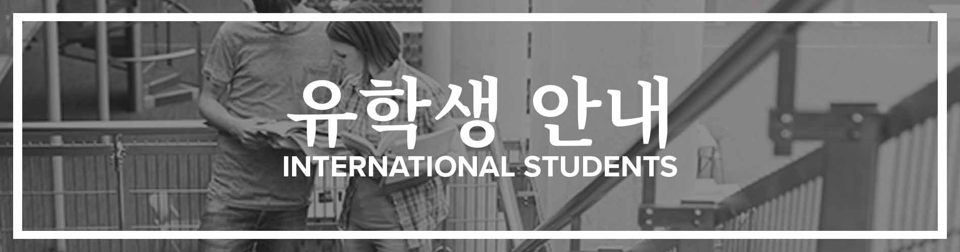 Korean International Students Banner
