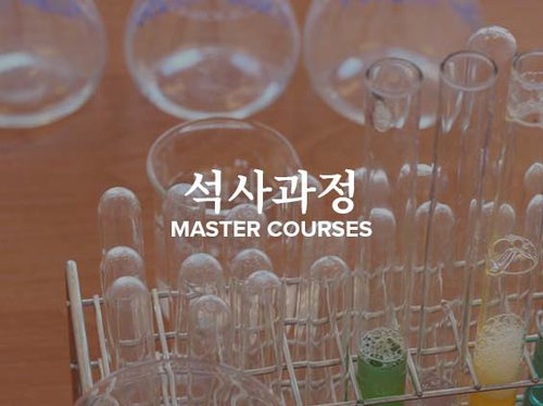 Korean Masters Courses Tile