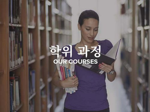 Korean Our Courses