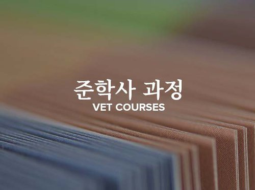 Korean Vet Courses Tile