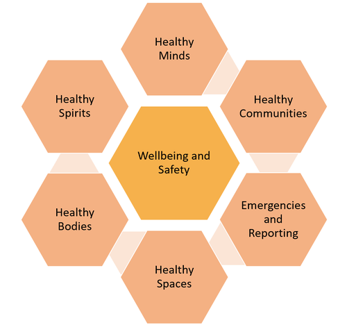 wellbeing and safety framework